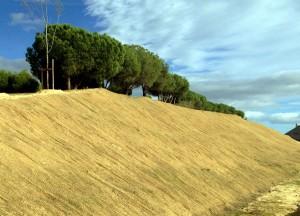 Restauración del paisaje